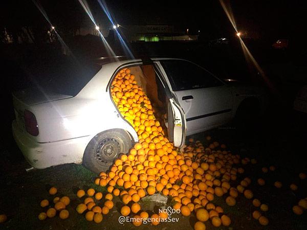 naranjas-robadas