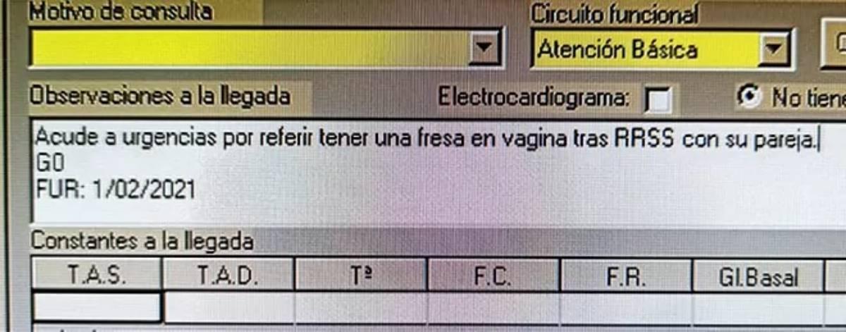 fresa vagina